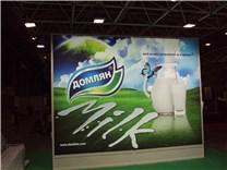 Кисело мляко Домлян